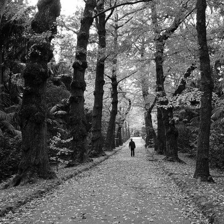 paisagem_preto_e_branco