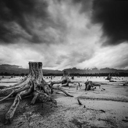 dead-landscape-1